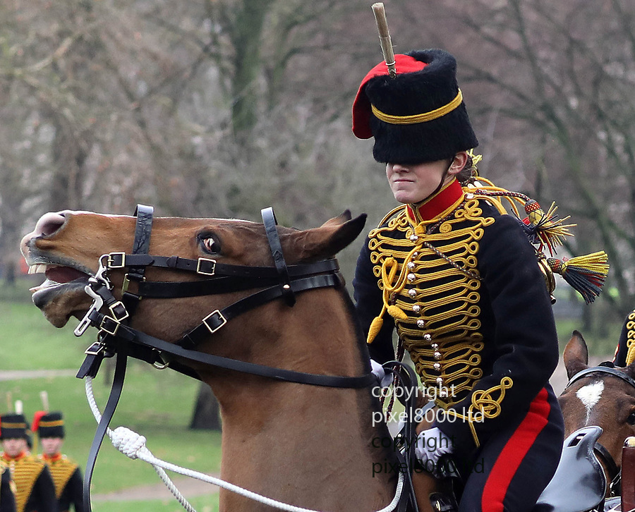 Pic shows: 41 gun salute green park.<br /> <br /> Female trooper has trouble controlling a frisky horse and her hat slipped<br /> <br /> Many of KIng's Troop Horse Artillery were women this year.<br /> <br /> <br /> <br /> <br /> <br /> <br /> pic by Gavin Rodgers/Pixel8000