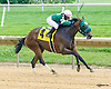 Quality Hey winning at Delaware Park on 7/7/16