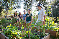 Dylan Bruce '16. Photo from the F.E.A.S.T (Food Energy and Sustainability Team) student-run organic garden at UEPI.<br />