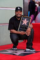 Ice Cube WOF