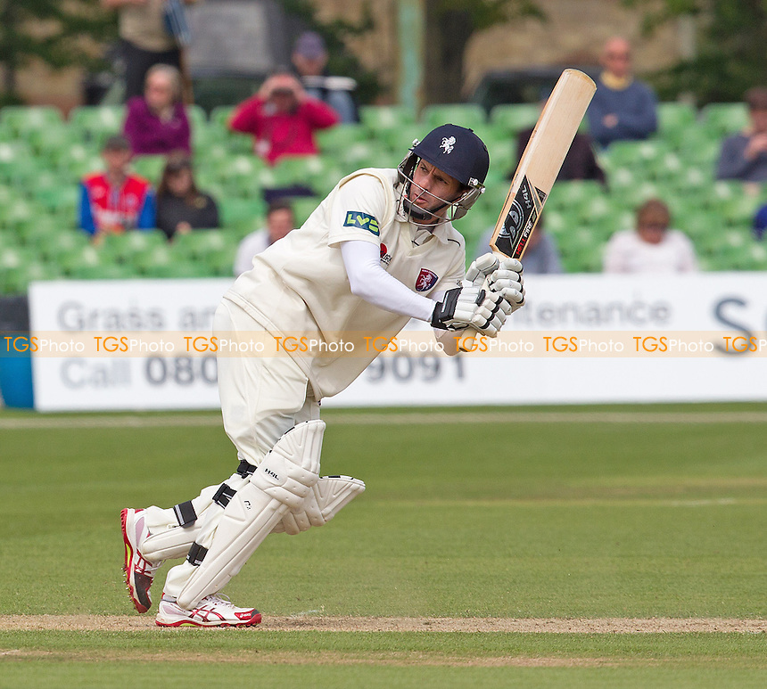 Brendan Nash of Kent CCC plays a deft shot fine to leg to collect a boundary on his way to century off 125 deliveries- Kent CCC vs Surrey CCC - LV County Championship Division Two Cricket at the Spitfire Ground, St Lawrence, Canterbury, Kent - 05/05/14 - MANDATORY CREDIT: Ray Lawrence/TGSPHOTO - Self billing applies where appropriate - 0845 094 6026 - contact@tgsphoto.co.uk - NO UNPAID USE