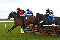 Cill Anna ridden by Harry Cobden leads in The Hunts Food Service Mares' Maiden Hurdle  during Horse Racing at Wincanton Racecourse on 5th December 2019