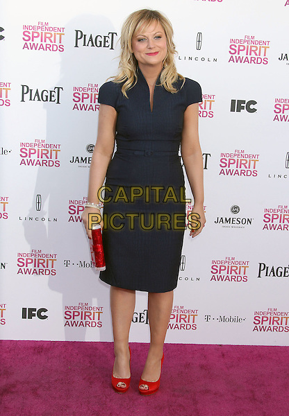 Amy Poehler.2013 Film Independent Spirit Awards - Arrivals held at Santa Monica Beach..Santa Monica, California, USA,.23rd February 2013..indy indie indies indys full length navy blue dress red peep toe shoes clutch bag .CAP/ADM/RE.©Russ Elliot/AdMedia/Capital Pictures