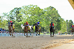 HOT SPRINGS, AR - APRIL 14:Count Fleet Sprint Handicap. Oaklawn Park on April 14, 2018 in Hot Springs,Arkansas. (Photo by Ted McClenning/Eclipse Sportswire/Getty Images)