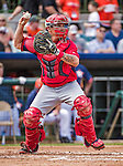 12 March 2014: Washington Nationals catcher Jose Lobaton in action during  a Spring Training game against the Houston Astros at Osceola County Stadium in Kissimmee, Florida. The Astros rallied in the bottom of the 9th to edge out the Nationals 10-9 in Grapefruit League play. Mandatory Credit: Ed Wolfstein Photo *** RAW (NEF) Image File Available ***