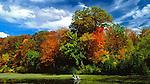 Fishing in the Fall, Cincinnati, Ohio, Winton Woods