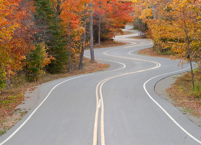 Wisconsin Highway 42 curves and undulates through the forest in its last miles at the tip of the Door Peninsula in Wisconsin