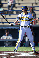 Michigan Wolverines designated hitter Drew Lugbauer (17) at bat against the Central Michigan Chippewas on March 29, 2016 at Ray Fisher Stadium in Ann Arbor, Michigan. Michigan defeated Central Michigan 9-7. (Andrew Woolley/Four Seam Images)