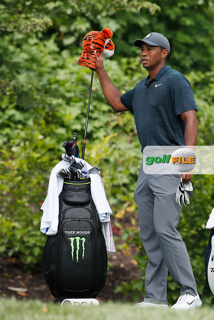 Tiger Woods (USA) pulls out his driver on the 8th tee during the 1st round of the 100th PGA Championship at Bellerive Country Club, St. Louis, Missouri, USA. 8/9/2018.<br /> Picture: Golffile.ie | Brian Spurlock<br /> <br /> All photo usage must carry mandatory copyright credit (© Golffile | Brian Spurlock)