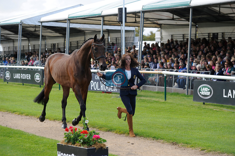Stamford, Lincolnshire, United Kingdom, 4th September 2019, Dee Kennedy (GB) & Chequers Playboy during the 1st Horse Inspection of the 2019 Land Rover Burghley Horse Trials, Credit: Jonathan Clarke/JPC Images