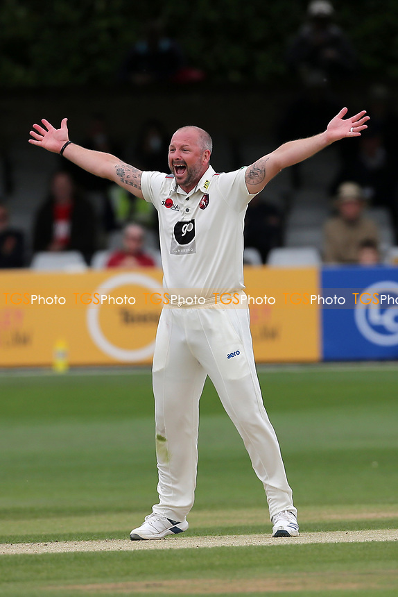 Darren Stevens of Kent appeals for the wicket of Tom Westley during Essex CCC vs Kent CCC, Specsavers County Championship Division 1 Cricket at The Cloudfm County Ground on 29th May 2019