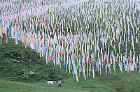 Tagong - Prayer flags at monastery.