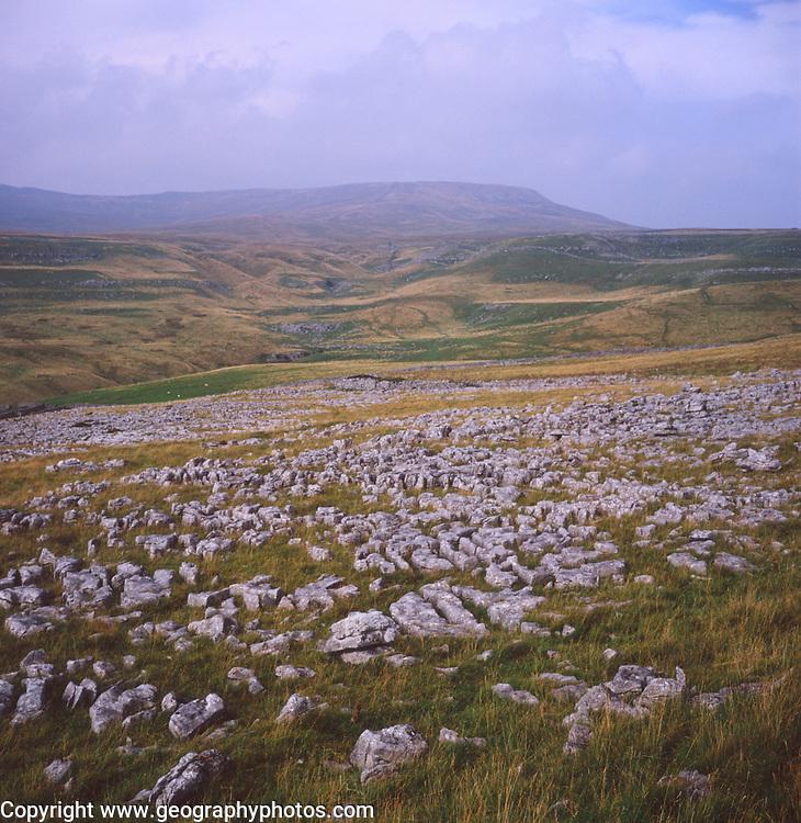 AJEM79 Limestone pavement Yorkshire Dales national park England