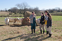 Dr David Smith with CVM Class of 2014 students on Mississippi State University, north farm. Explaining the different grasses used during winter for cattle feed.