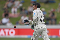 1st December 2019, Hamilton, New Zealand;  BJ Watling takes the catch of Zak Crawley on his test debut. International test match cricket, New Zealand versus England at Seddon Park, Hamilton, New Zealand. Sunday 1 December 2019.