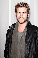 LOS ANGELES, CA - FEB 15: Liam Hemsworth at the Sony PlayStationAE Unveils PS VITA Portable Entertainment System at Siren Studios on February 15, 2012 in Los Angeles, California