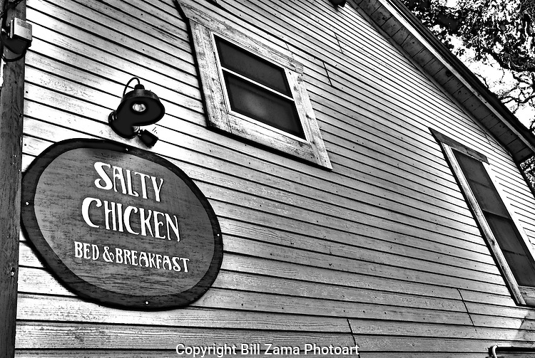 The Salty Chicken Bed & Breakfast in Wimberly Texas