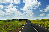 MAURITIUS, a highway road cuts through vibrant green landscape in the Mauritian interior