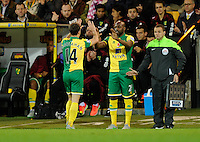 Youssouf Mulumbu replaces Wes Hoolahan of Norwich City during the Barclays Premier League match between Norwich City and Swansea City played at Carrow Road, Norwich on November 7th 2015