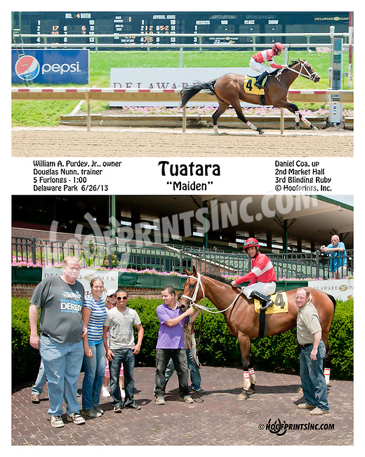 Tuatara winning at Delaware Park on 6/27/13