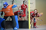 GER - Mannheim, Germany, December 19: During the 1. Bundesliga Sued Damen indoor hockey match between Mannheimer HC (blue) and Nuernberger HTC (red) on December 19, 2015 at Irma-Roechling-Halle in Mannheim, Germany. (Photo by Dirk Markgraf / www.265-images.com) *** Local caption ***