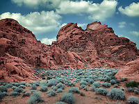 Sagebrush and rock formation. Valley of Fire State Park, Nevada