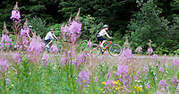 Photo by Stephen Brashear.From right, Cynthia McMath of Kirkland, Wash., Richard Chou of Kirkland, Wash., and Lorna Johnston of Bothell, Wash., ride past a patch of fire weed along the John Wayne Pioneer Trail between Hyak, Wash., and Rattlesnake Lake near North Bend, Wash., Sunday Aug. 17, 2008.