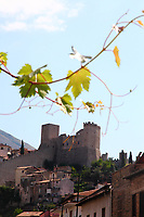 Itri: A view from faraway, under a branch of vine, of some buildings of the historical center of the town, that are dominated by its ancient castle. In fact, the old buildings are coloured, and also the battlements of the extended grey ancient walls that start from the castle are well visible.<br />