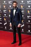 Alex Barahona attends red carpet of Feroz Awards 2018 at Magarinos Complex in Madrid, Spain. January 22, 2018. (ALTERPHOTOS/Borja B.Hojas)