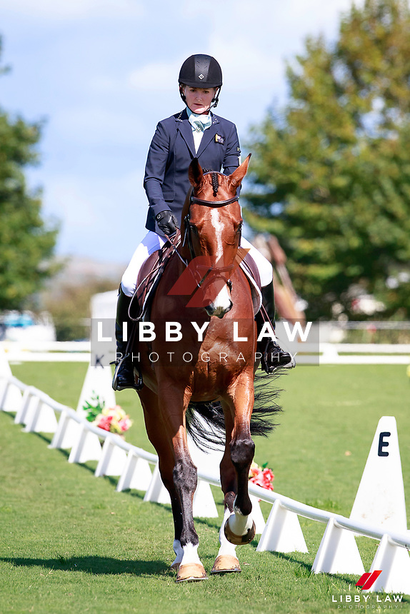 NZL-Megan Finlayson rides Greensleeves in the Horselands - CIC 1*.  INTERIM-1ST. 2017 NZL-Kihikihi International Horse Trial & NZ One Day Event Championship. Friday 7 April. Copyright Photo: Libby Law Photography