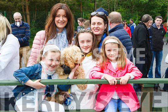 Attending the Abbeyfeale Town Park Dog Show last Sunday are ( Adults)<br /> Mary Ann O' Shea &amp; Nora Harnett. ( Children) Nell Harnett, Noreen<br /> Harnett &amp; Anne Marie O' Keeffe and dog Ted. , all from Castleisland.