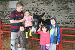 Luke Victory, Justin Devine, Daina Victory, Caolinn Ball and Jake Victory at the Teddy Bears Picnic at Newgrange Farm...Photo NEWSFILE/Jenny Matthews.(Photo credit should read Jenny Matthews/NEWSFILE)....This Picture has been sent you under the condtions enclosed by:.Newsfile Ltd..The Studio,.Millmount Abbey,.Drogheda,.Co Meath..Ireland..Tel: +353(0)41-9871240.Fax: +353(0)41-9871260.GSM: +353(0)86-2500958.email: pictures@newsfile.ie.www.newsfile.ie.FTP: 193.120.102.198.