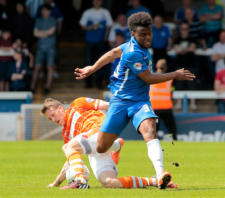 Peterborough United&rsquo;s Shaquile Coulthirst is tackled by Blackpool's Jim McAlister<br /> <br /> Photographer David Shipman/CameraSport<br /> <br /> Football - The Football League Sky Bet League One - Peterborough United v Blackpool  - Sunday 8th May 2016 - ABAX Stadium - London Road   <br /> <br /> &copy; CameraSport - 43 Linden Ave. Countesthorpe. Leicester. England. LE8 5PG - Tel: +44 (0) 116 277 4147 - admin@camerasport.com - www.camerasport.com