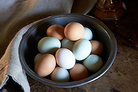 The fresh eggs on the kitchen table are from a neighbouring farm