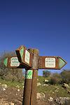 Israel, Lower Galilee. Bet Keshet scenic road