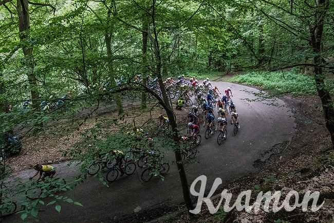 peloton U-turning in the forest<br /> <br /> Ster ZLM Tour (2.1)<br /> Stage 4: Hotel Verviers &gt; La Gileppe (Jalhay)(190km)