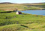 Small shed in field by Gon Firth, near Voe, Mainland, Shetland Islands