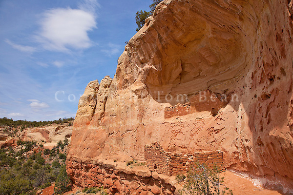 Ancient Puebloan cliff dwelling along the Sand Canyon Trail in Canyons of the Ancients National Monument, west of Cortez, Colorado, AGPix_1919.