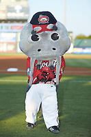 "Carolina Mudcats mascot ""Muddy"" poses for a photo prior to the 2018 Carolina League All-Star Classic at Five County Stadium on June 19, 2018 in Zebulon, North Carolina. The South All-Stars defeated the North All-Stars 7-6.  (Brian Westerholt/Four Seam Images)"