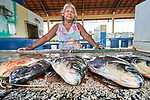 A woman sells fresh fish at a dock in Santarem, a city alongside the Amazon River in Brazil's northern Para state.
