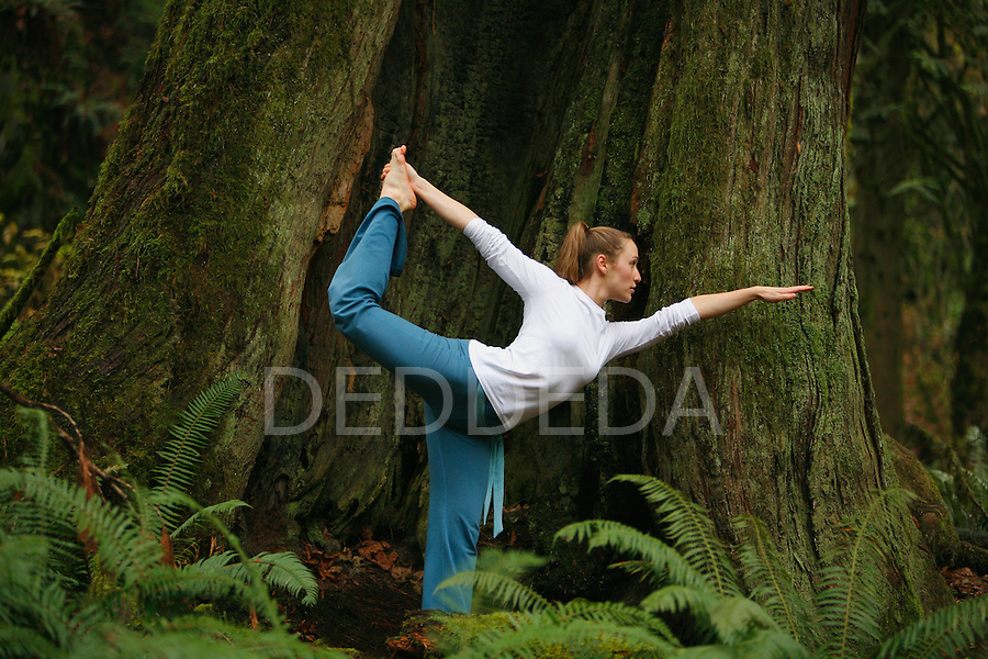 A young woman does yoga in old growth forest in Goldstream Provincial Park near Victoria, British Columbia, BC, Canada..
