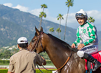 ARCADIA, CA APRIL 8:  #1 Sircat Sally ridden by a smiling Mike Smith return to the connections after winning the Providencia Stakes (Grade lll) on April 8, 2017 at Santa Anita Park in Arcadia, CA. (Photo by Casey Phillips/Eclipse Sportswire/Getty Images)