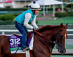 October 27, 2019 : Breeders' Cup Turf entrant United, trained by Richard Mandella, exercises in preparation for the Breeders' Cup World Championships at Santa Anita Park in Arcadia, California on October 27, 2019. John Voorhees/Eclipse Sportswire/Breeders' Cup/CSM