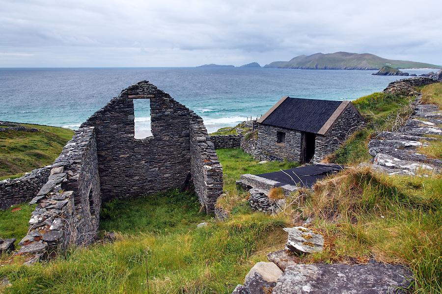 Abandoned stone building in farmer's field, Slea Head Drive, Dingle Peninsula, County Kerry, Republic of Ireland