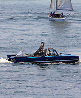 "An amphibious car with a person and two dogs on board takes a Sunday ""drive"" on Lake Michigan, Milwaukee, WI, Sunday, June 26, 2011.  (Photo by Brian Cleary/www.bcpix.com)"