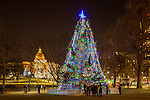 Boston's Christmas tree and the Massachusetts State House on Boston Common in Boston, Massachusetts, USA