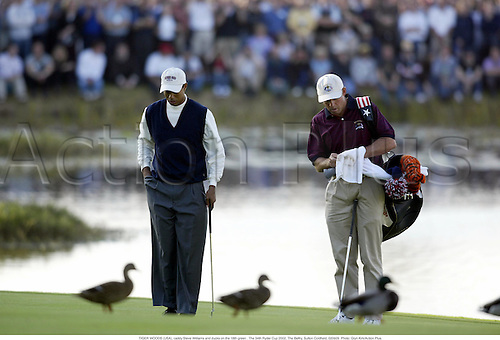 TIGER WOODS (USA), caddy Steve Williams and ducks on the 18th green . The 34th Ryder Cup 2002, The Belfry, Sutton Coldfield, 020929. Photo: Glyn Kirk/Action Plus....golf golfer..