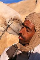 Kamel und sein Mensch bei Tozeur, Tunesien