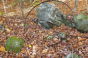 Remnants of the abandoned Thornton Gore settlement in Thornton, New Hampshire. Thornton Gore was the site an old hill farming community that was abandoned during the 19th century. This artifact is possibly a flat steel tire from a wagon wheel.