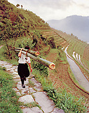 CHINA, Longsheng, man carries bamboo at the Dragon Backbone Rice Terraces